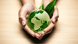 Working in a Green Economy